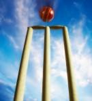 Cricket Ball Striking Wicket